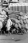 delhi-hand-cart-v-T