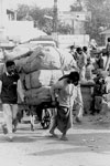 delhi-hand-cart2-v-T