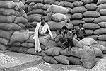 delhi-olddelhi-market-h-T